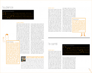 ra FT 2008_Page_16