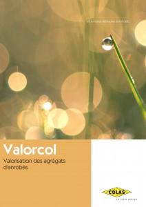 valorcol5_Page_4